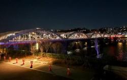 '어스아워' 캠페인에 동참한 서울시 그리고 한강교