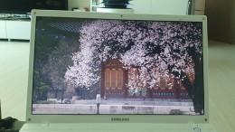 문화유산채널에서 봄을 맞은 궁궐의 풍경을 보는 꽃나들이를 떠난다