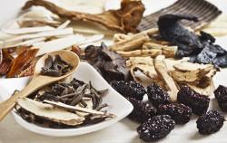 서울시보건환경연구원은 면역증진 및 호흡기질환에 좋은 약용식물을 발표했다