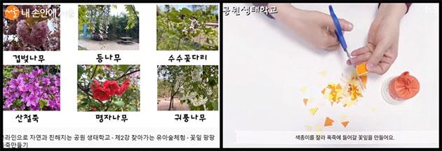 두 번째 주 공원 '찾아가는 유아숲 체험'에서는 꽃을 보며 꽃잎 폭죽을 만드는 법을 알려준다