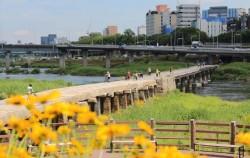 조선시대 만든 가장 긴 다리