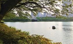 자연과 빌딩 숲이 어우러져 있는 석촌호수 산책길