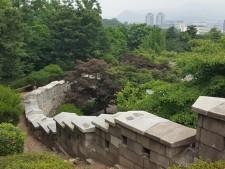 일반인 출입이 불가능하였던 신라호텔~민주평통 뒤뜰을 할애하여 조성된 성곽길에서 바라본 웅장한 한양도성 성체 모습