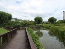 창포원의 습지원 전경모습으로 도시속에서 특별히 찾아 볼수 있는 습지와 자연 그리고 생태 식물을 통해 행복한 힐링의 순간을 얻을 수 있다