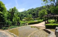 아차산 생태공원