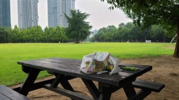 서울숲 쓰담쓰담은 '쓰레기를 담다' 비대면 자원봉사활동이다. 쓰담봉투와 집게와 장갑이 필요하다