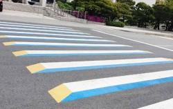 국회도서관 앞에 설치된 3D 트릭아트 입체횡단보도