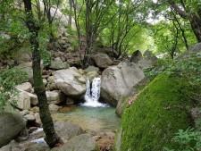 벽운계곡의 바위 사이로 흐르는 물이 폭포처럼 시원하게 흐른다