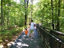산책로에서 아빠와 아이가 정 답게 이야기를 주고받으며 걷고 있다.