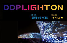 세계적 빛 축제 '서울라이트' 사진·영상 공모전 개최