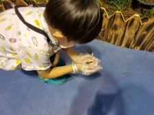 행사장 중앙에 위치한 곤충주제관에서 한 아이가 메뚜기를 관찰하고 있다.