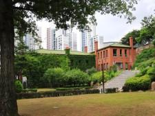 손기정 월계관 기념수 밑에서 바라본 기념관을 비롯한 고풍스런 건물들이 보이는 풍경