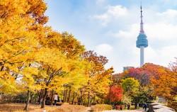 서울시가 10월 20일까지 '2020 서울관광대상' 후보자를 공개 모집한다.