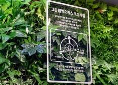 관악구 은천동주민센터 바이오월과 공기정화식물 화분 ⓒ관악구청