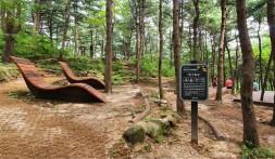 북한산 '태교숲&유아체험숲'에서 치유와 힐링을 한다. ⓒ김미선