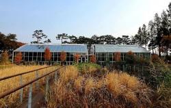 서울시는 지난 27일, 선유도공원 온실을 리모델링해서 작은 식물원으로 바꿔 개장했다.