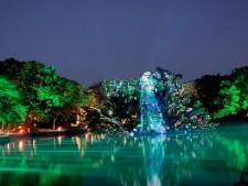 제6회 궁중문화축전의 하이라이트인 '빛의 연못'이 된 춘당지