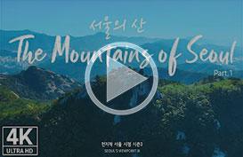 랜선 단풍놀이 떠나볼까! 하늘에서 바라본 '서울의 산'