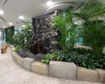 강남구는 7호선 청담역 지하공간 650m 에 공기청정기 75개를 가동하고 식물을 심어서 미세먼지 프리존을 만들었다.