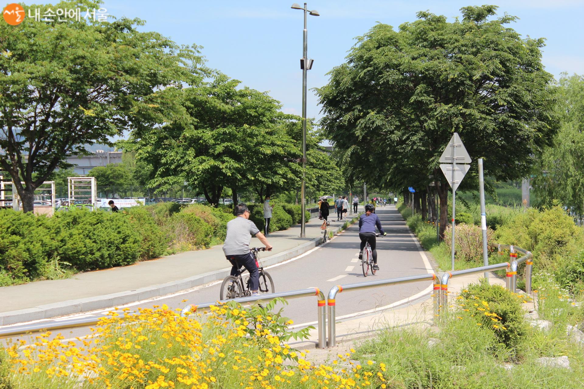 청계천 주변으로 자전거를 타는 시민들