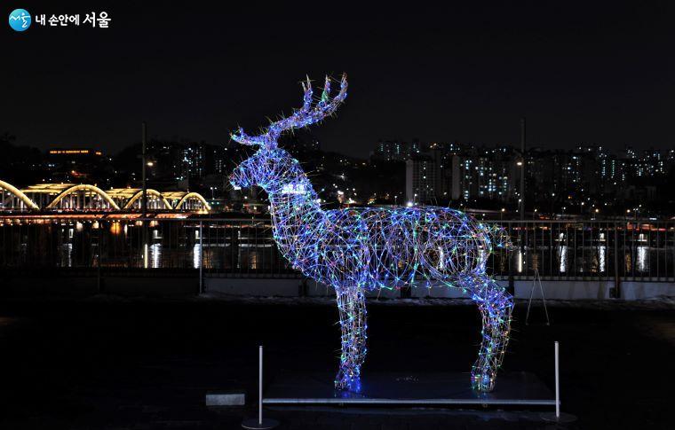 작가는 '위로와 연대가 필요한 서울 도시인'을 위해 이 아름다운 동물을 선택했다 ⓒ조수봉
