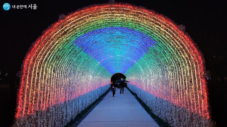 노원불빛정원의 신비로운 불빛터널 전경