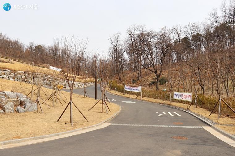 조성이 잘 되어 있는 천왕산가족캠핑장 산책길