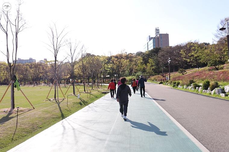 중앙잔디광장을 둘러싼 육상트랙을 걷는 시민들