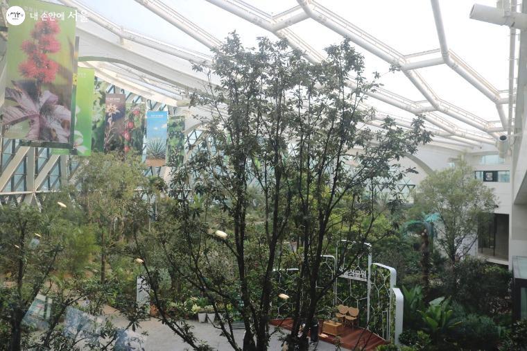 서울식물원 온실 내부