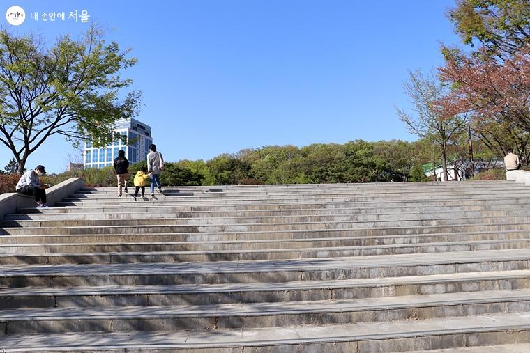 중앙잔디광장 앞 계단도 인기 촬영 명소로 알려져 있다.