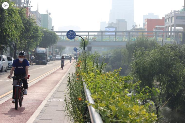 최근 개통한 청계천 자전거도로를 이용해 시민들이 출근을 하고 있다.