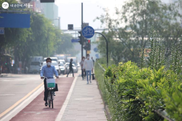 청계천 자전거도로 주변으로 푸른 녹음이 생기를 더한다.