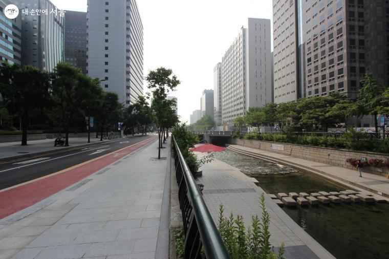 차도, 자전거도로 등이 명확히 구분돼 안전하고 깔끔하게 조성됐다.